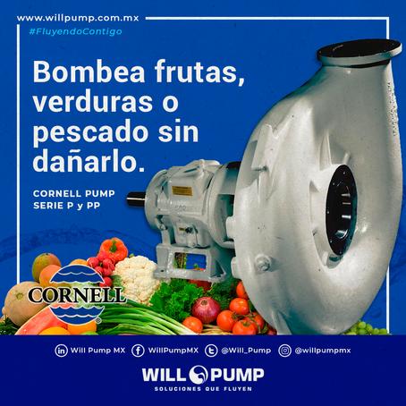 Historia de Éxito: Bomba Cornell de Alimentos 4NMPP utilizada para bombear sin daño frutas y verdura