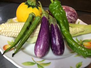 7月23日のお勧め野菜料理です