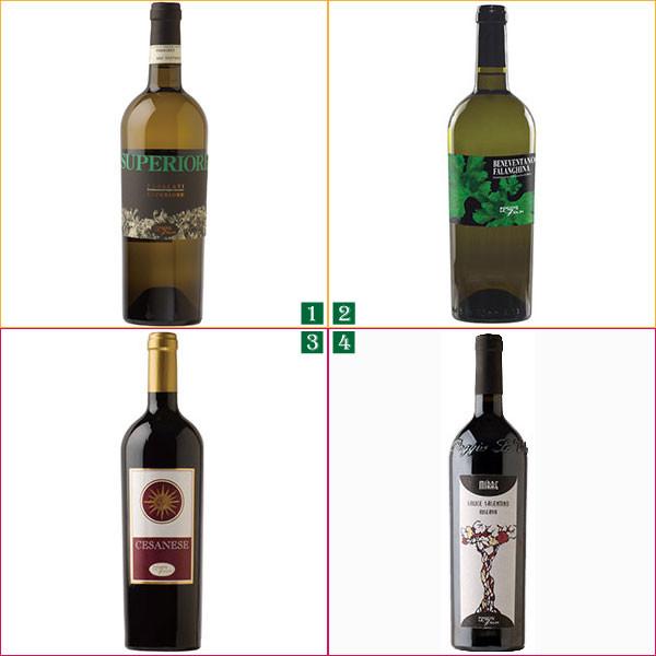 wine_roma.jpg