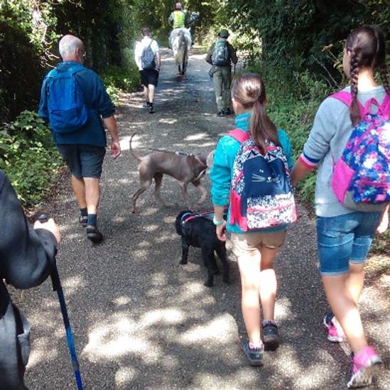 Free guided walk - St Petroc's to Nanstallon