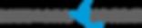 Medica Spark Logo