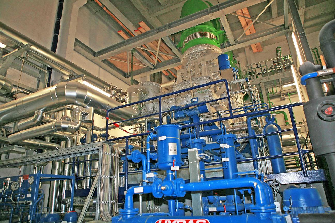 Novus Energy 31.jpg