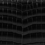 Black Croc. Shiny
