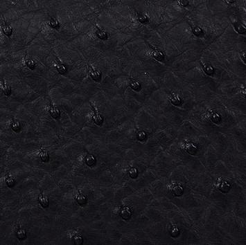 Ostrich Black