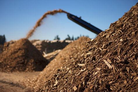 Acacia Energry biomass