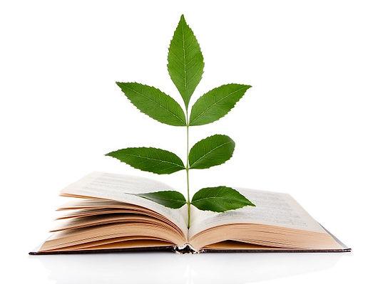 environmental-education-arab.jpg