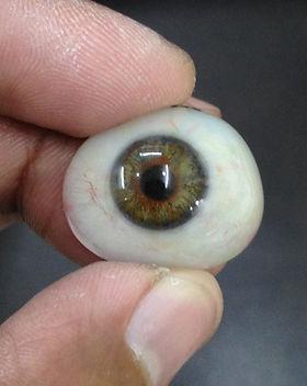 Artificial Eye.jpg