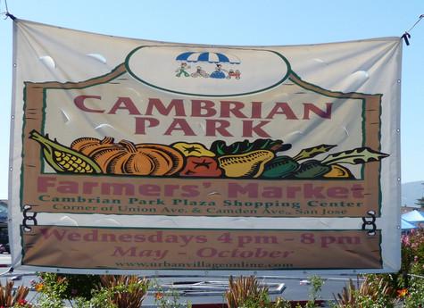 Cambrian Park.jpg