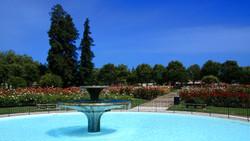 San_Jose_Municipal_Rose_Garden1