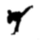 taekwondo-kick-side-md[1].png