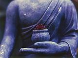 buddha-1308478__340.jpg
