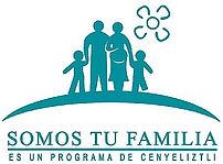 logo STF.jpg