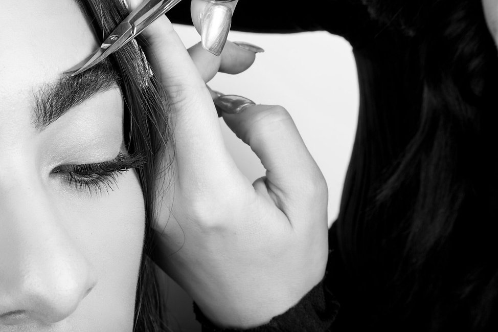 Eyebrow Services Giselle Soto Brows Los Angeles Ca