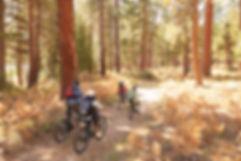 Lifestyle - Biking 3.jpeg