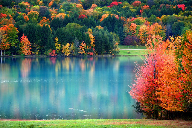 PA - Lake.jpeg