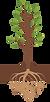 bigger tree.png