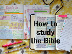 Five Keys To Studying the Bible Effectively