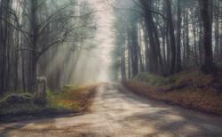 The road to Llandogo