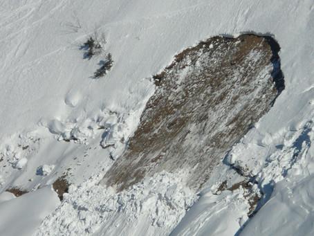 Comment préparer et organiser une bonne recherche Avalanche?