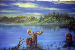Northern Moose B