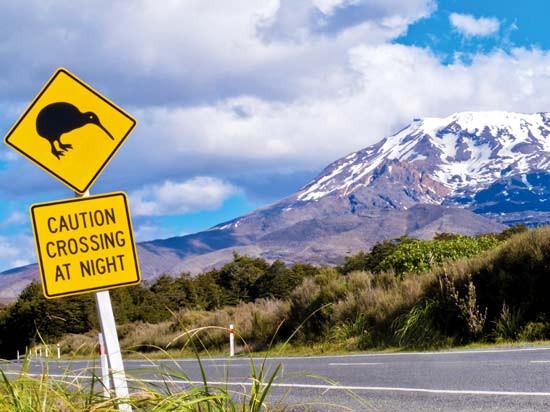 Les courageuses réformes du pays des Kiwis