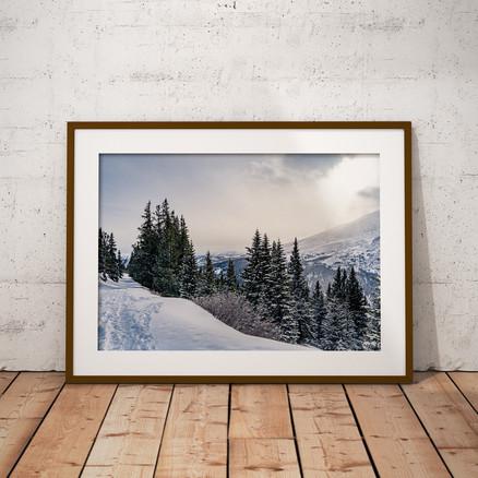 Winter's Signature Series Part 2