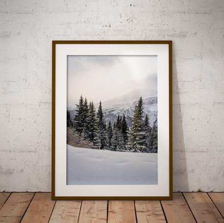 Winter's Signature Series Part 1