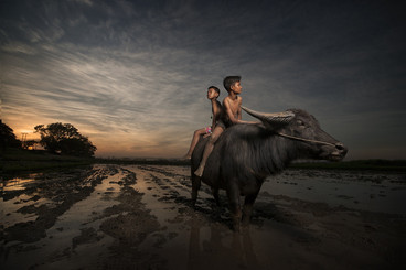 FIAP Gold Medal - Color -  Looking for my horse - Alexandrino Lei Airosa - Macao