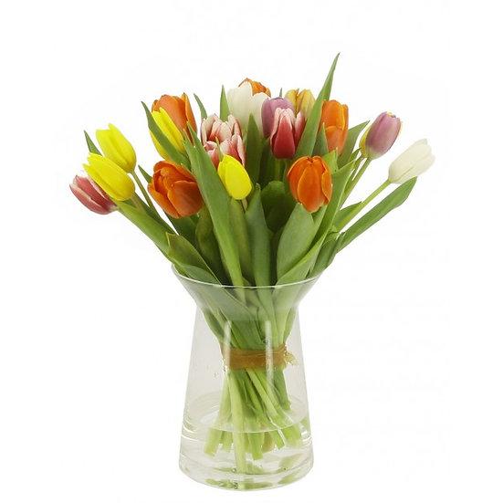 12 Mixed Tulips