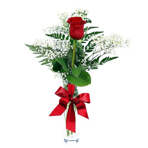 single red rose with vase