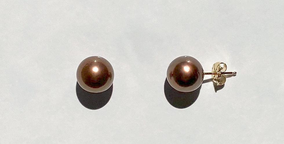 Stud Earrings (chocolate Tahitian pearl)