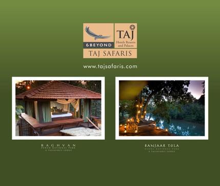 Taj Safari - Back Wall 9.5ft x 8ft.jpg
