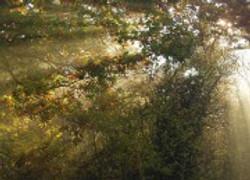 cropped-jubilee-park-180x130