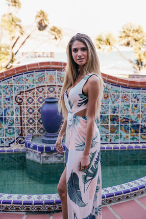 pollack-emily-adamson-dress-06207.jpg