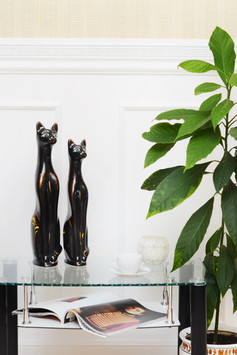Tall cats interior photo