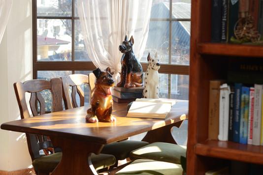 Dogs interior photo
