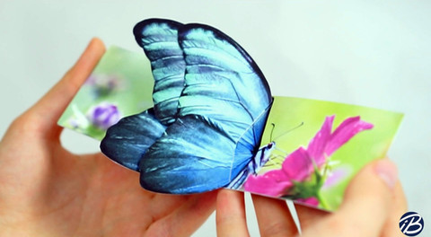 Blue butterfly business card