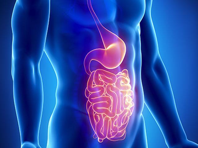 Foto-Digestivo.jpg