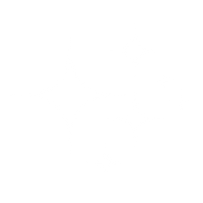 White-Sparkle.png