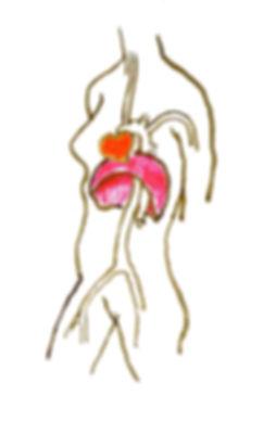 cohérence cardiaque - dessin de Vonnick Caroff