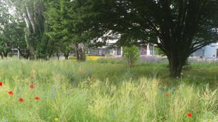 DIGITALEpaysage_-_Parc_de_l'Université