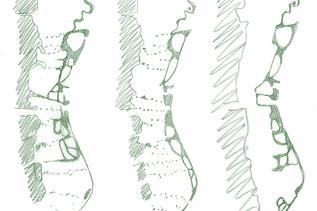 d-les_îles_de_la_ZIMR_les_tresses_vert