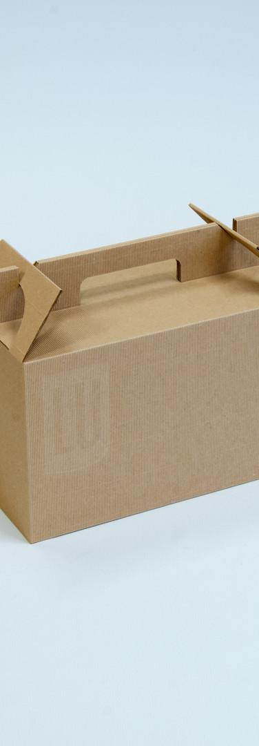 Kartonnen koffer