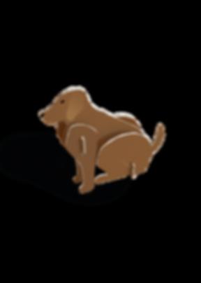 3D kaarten - hond