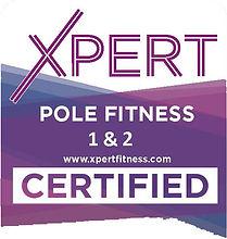 XPERT-Web-Badge-Pole-12-certificate.jpg