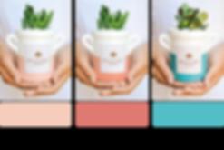 palette_1.png