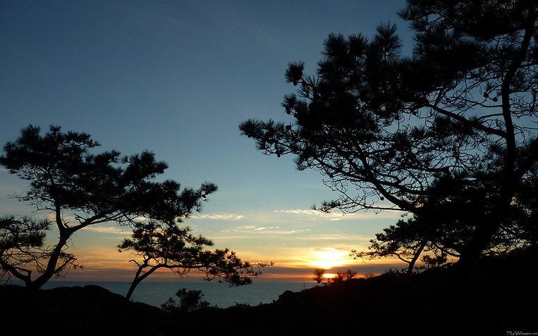Torrey-Pine-Sunset-III.jpg