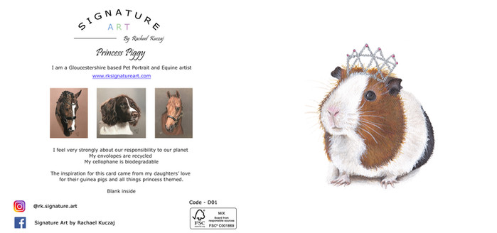 D01 Princess Piggy