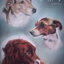 Millie, Molly and Flick with water marks