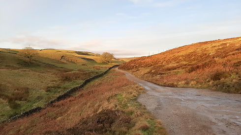 Moorland-farmland view.jpg